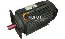 GETTYS M341-MKOA-8001 MOTOR